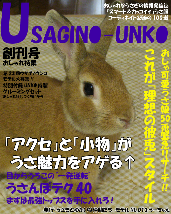 Usaginounko_2